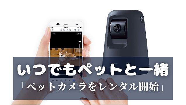【ペットの留守番が心配】パナソニックのペットカメラをレンタルしよう